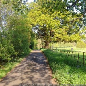 St Vincents Lane, Addington