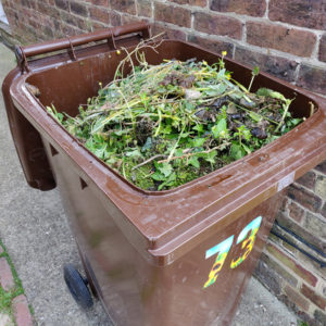 Brown wheelie full of garden waste